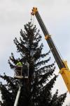 Vánoční strom pro Prostějov